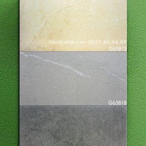 Gạch ốp tường 30x60 Tân Bình