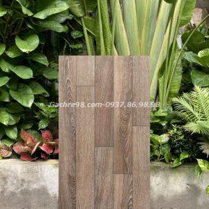 Gạch giả gỗ 60x120 ấn độ