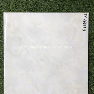 Gạch bóng kiếng lát sàn 60x60 cao cấp
