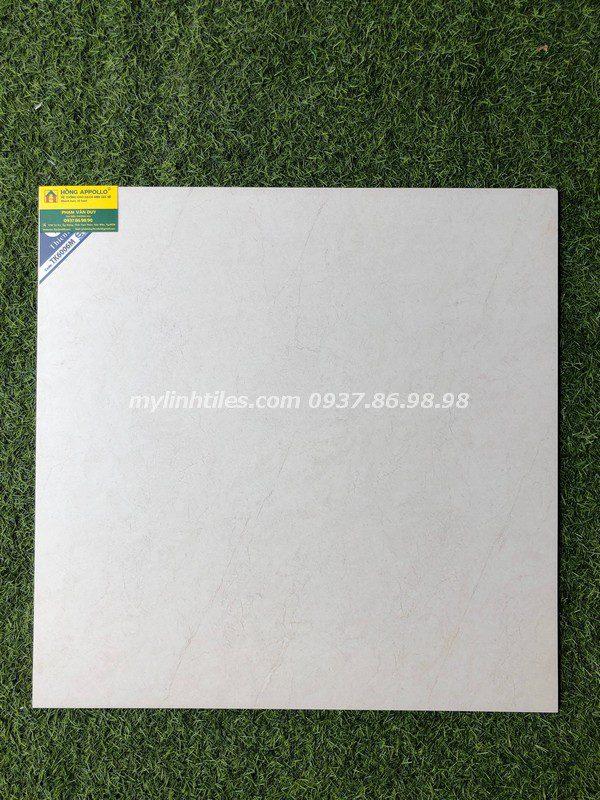 Gạch lát sàn men khô 60x60 hcm